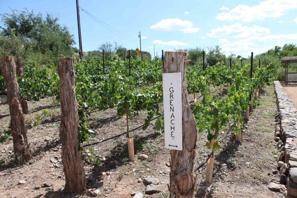 Pursuing The Dream:  The Costs Associated with Buying a Winery and Vineyard (1/3)