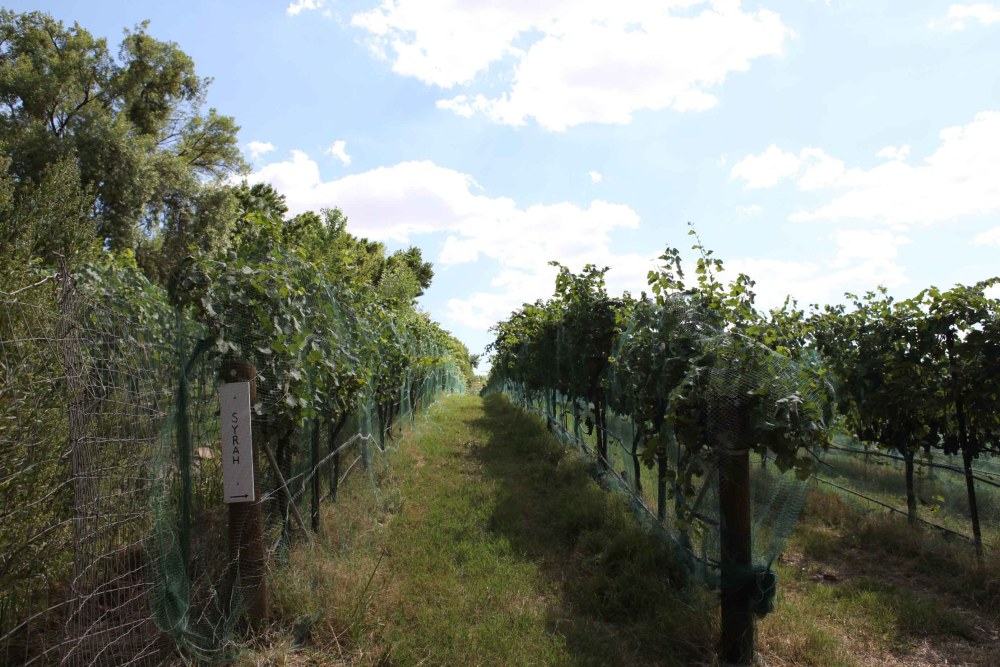 Pursuing The Dream:  The Costs Associated with Buying a Winery and Vineyard (3/3)