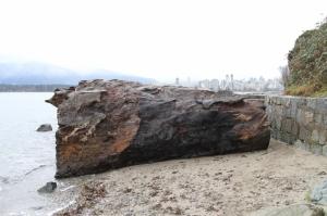 the big log vancouver