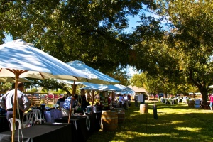 Photo from the Festival on the Farm at South Mountain 2011