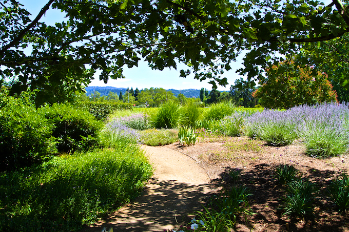 Beautifully landscaped Rutherford Grove Winery property