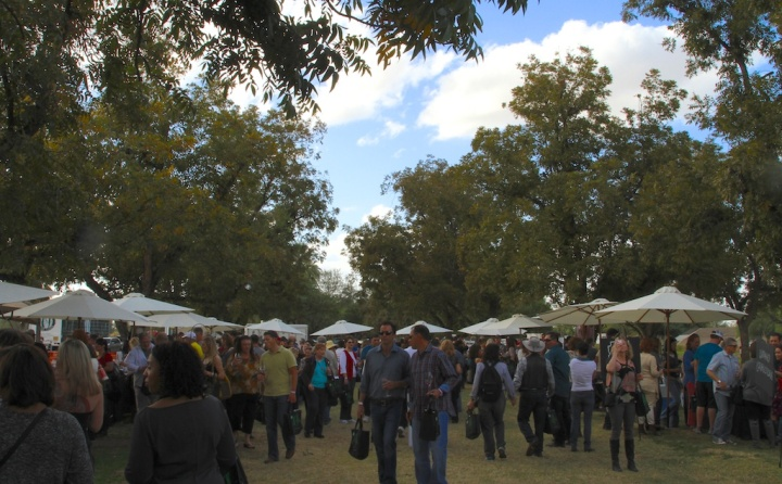 AZWGA festival 2013
