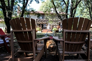 You could be enjoying yourself here, at Red Cap Vineyards