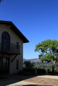 Keever-vineyards-19